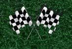 checkered_flags.jpg