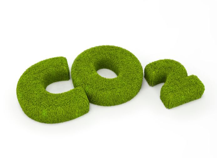 co2 in grass-smalldpi.jpg